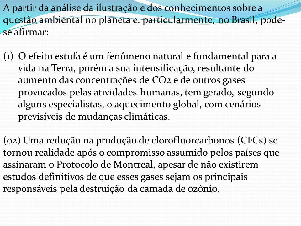 A partir da análise da ilustração e dos conhecimentos sobre a questão ambiental no planeta e, particularmente, no Brasil, pode-se afirmar: