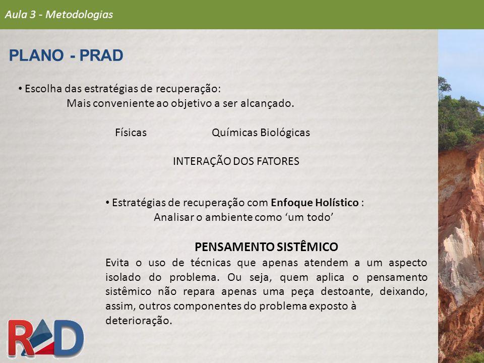 PLANO - PRAD PENSAMENTO SISTÊMICO Aula 3 - Metodologias
