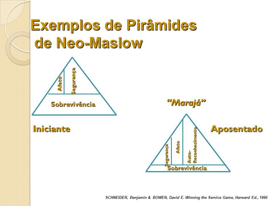 Exemplos de Pirâmides de Neo-Maslow