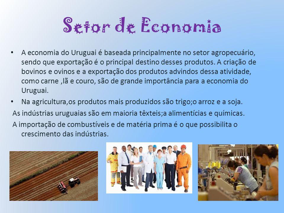 Setor de Economia