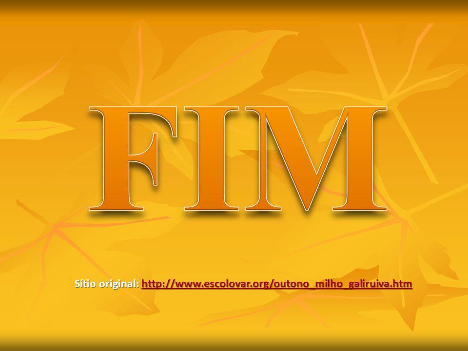 FIM Sítio original: http://www.escolovar.org/outono_milho_galiruiva.htm