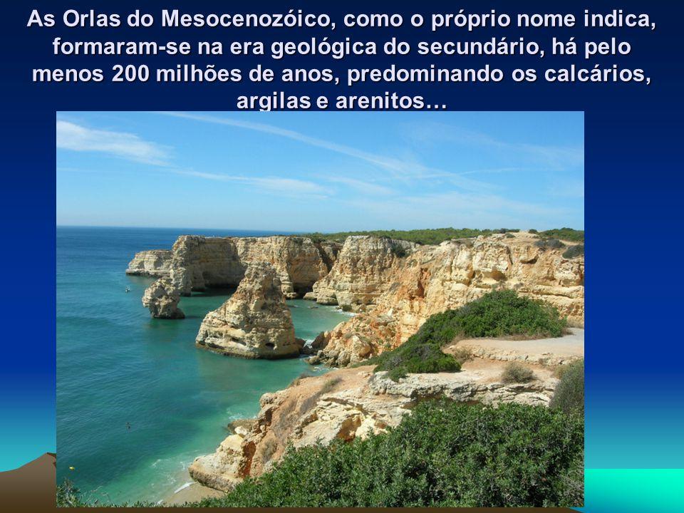 As Orlas do Mesocenozóico, como o próprio nome indica, formaram-se na era geológica do secundário, há pelo menos 200 milhões de anos, predominando os calcários, argilas e arenitos…