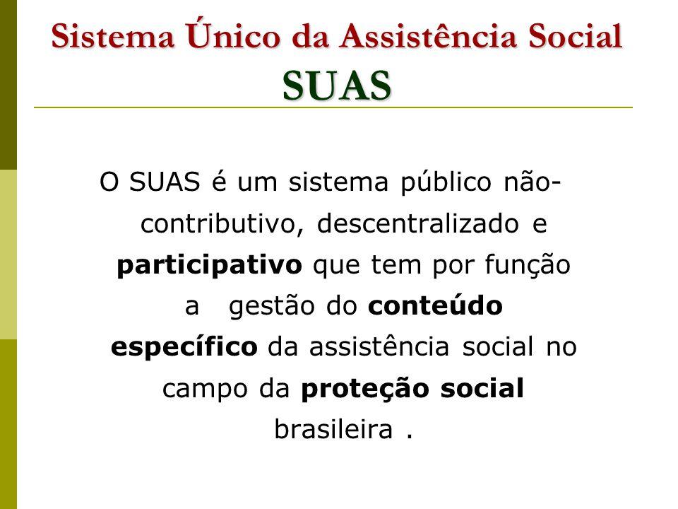 Sistema Único da Assistência Social SUAS