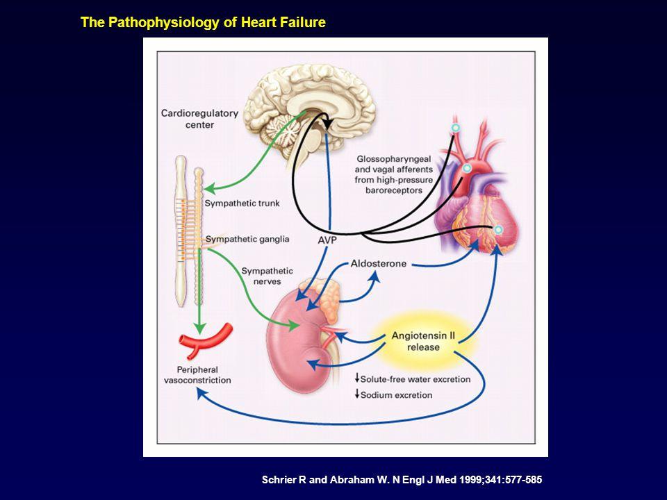 The Pathophysiology of Heart Failure