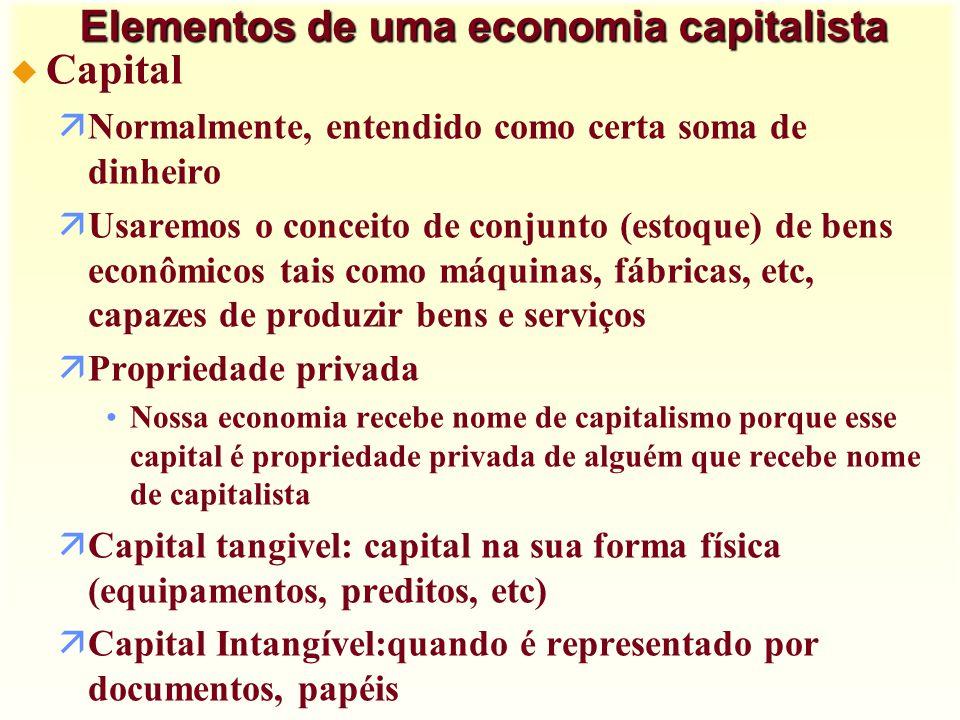 Elementos de uma economia capitalista
