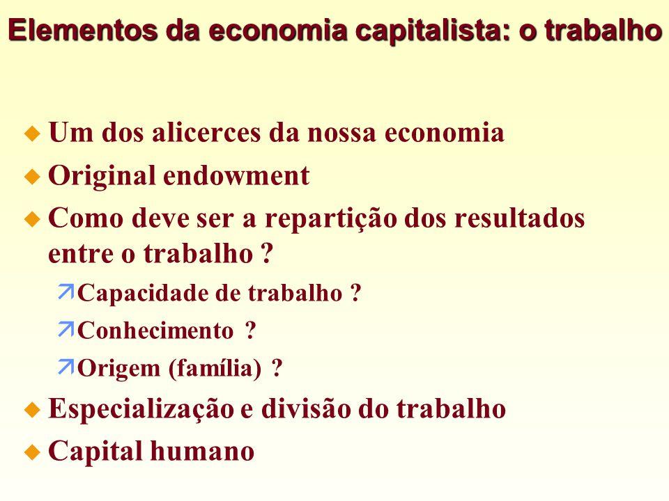 Elementos da economia capitalista: o trabalho