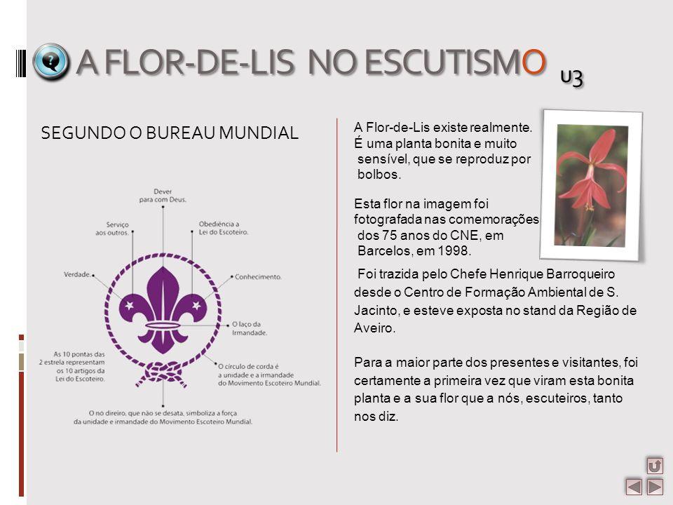 A FLOR-DE-LIS NO ESCUTISMO u3