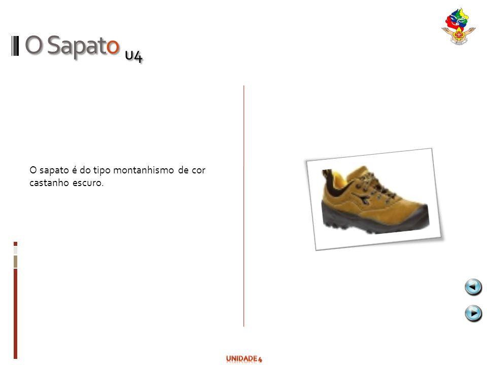 O Sapato u4 O sapato é do tipo montanhismo de cor castanho escuro.