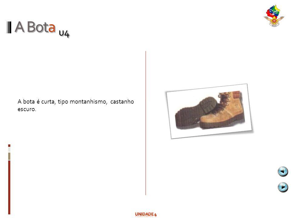 A Bota u4 A bota é curta, tipo montanhismo, castanho escuro. Unidade 4