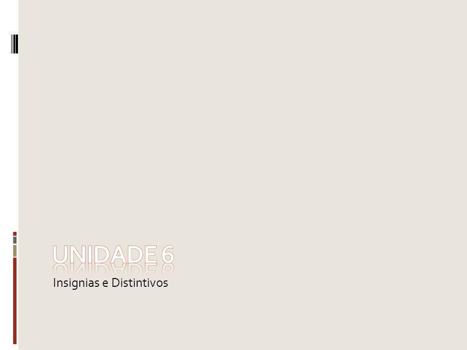 Unidade 6 Insignias e Distintivos