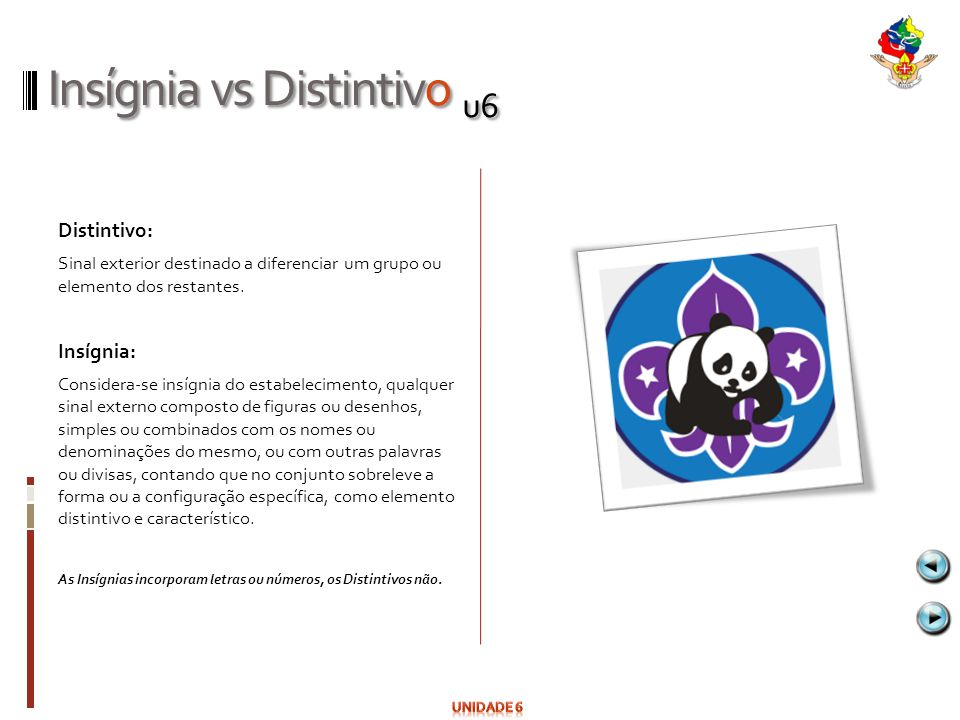 Insígnia vs Distintivo u6