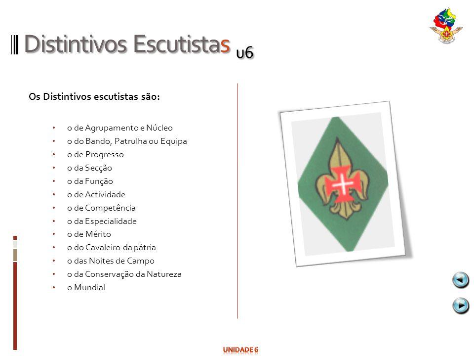 Distintivos Escutistas u6
