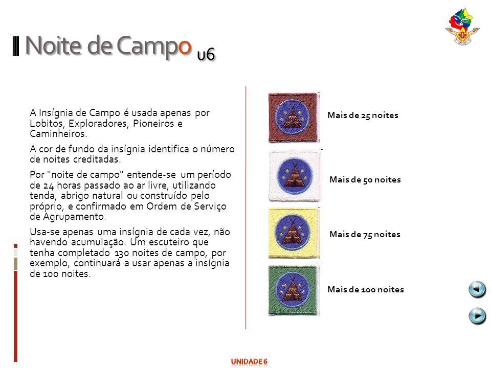 Noite de Campo u6