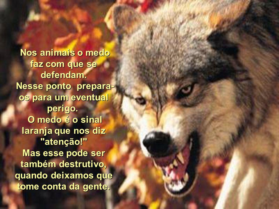 Nos animais o medo faz com que se defendam.