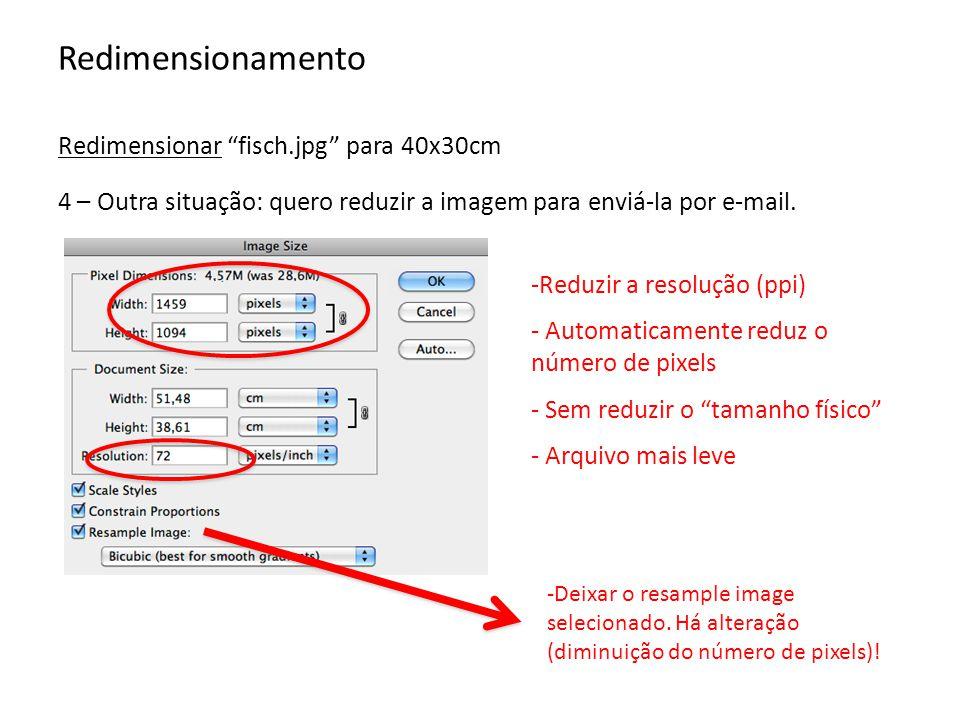 Redimensionamento Redimensionar fisch.jpg para 40x30cm