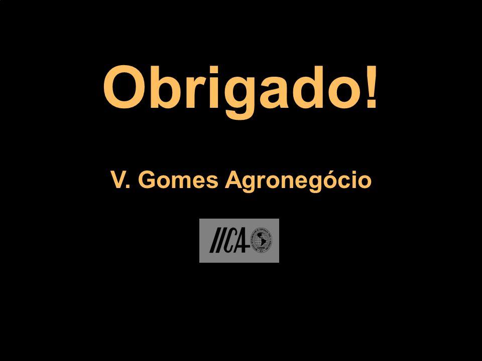 Obrigado! V. Gomes Agronegócio
