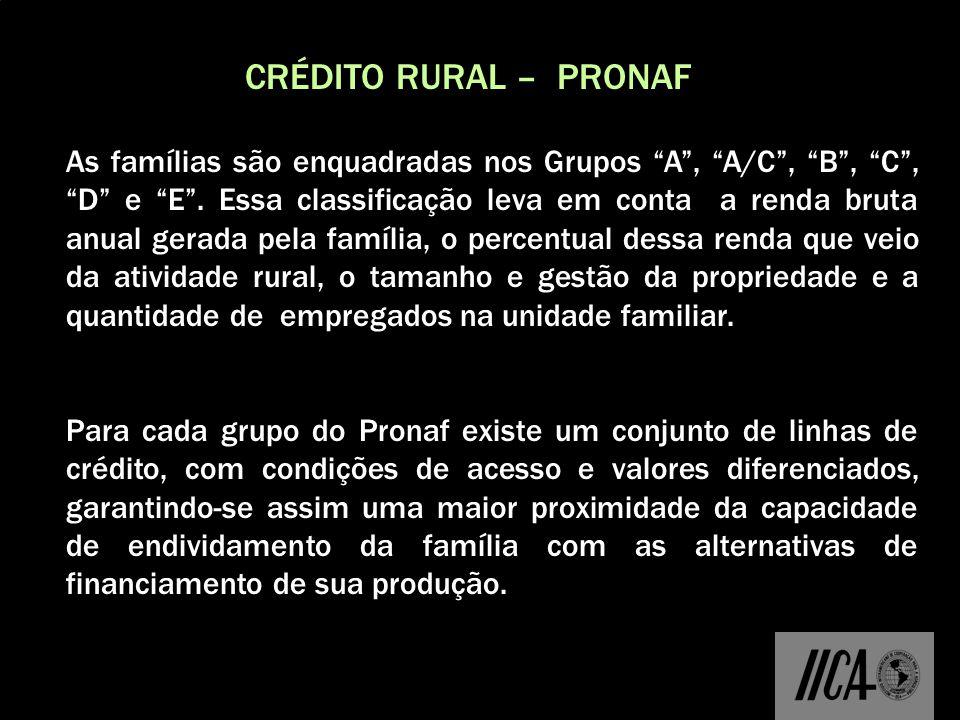 CRÉDITO RURAL – PRONAF