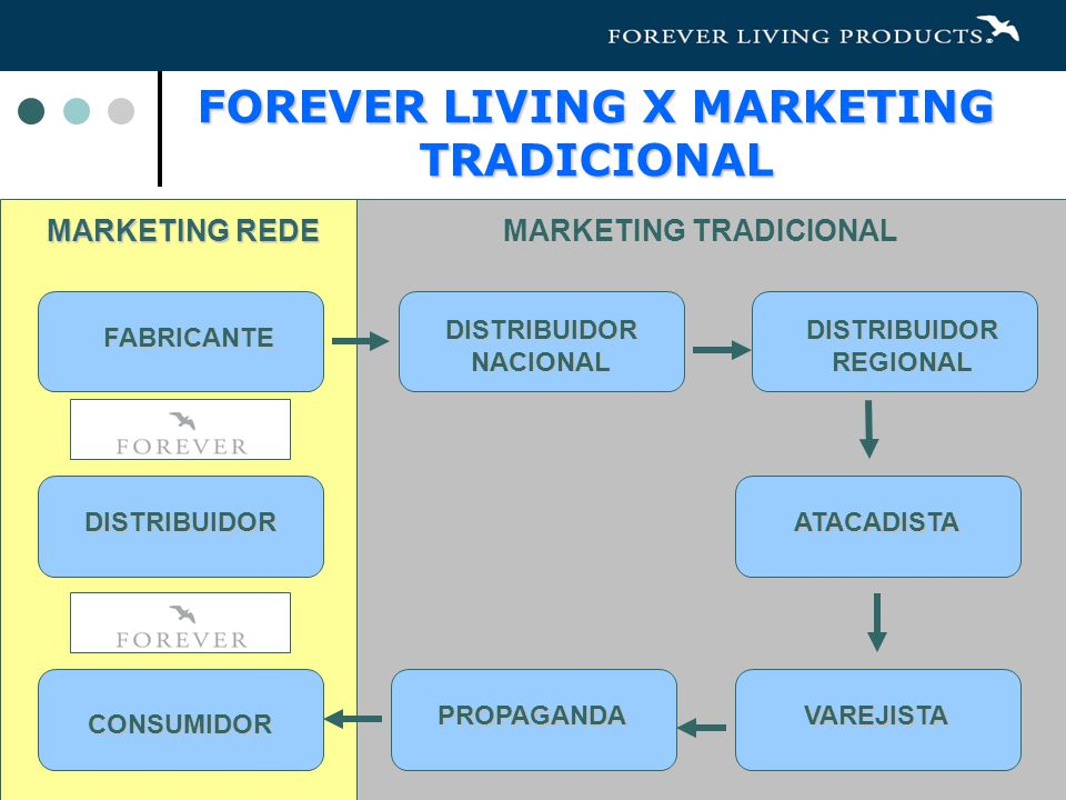 FOREVER LIVING X MARKETING TRADICIONAL