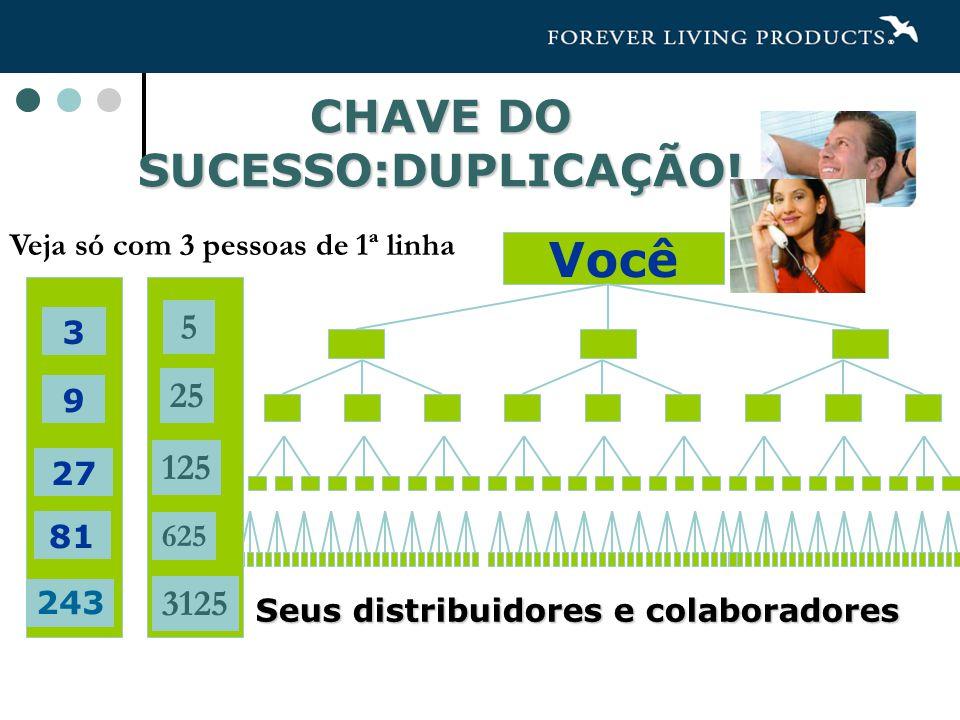 CHAVE DO SUCESSO:DUPLICAÇÃO!