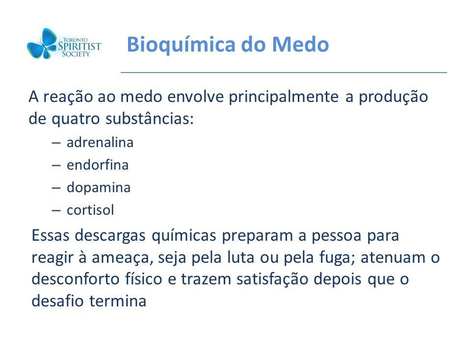 Bioquímica do Medo A reação ao medo envolve principalmente a produção de quatro substâncias: adrenalina.