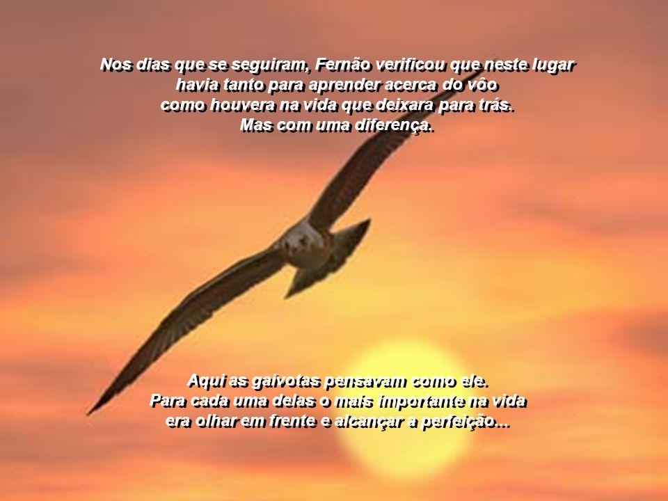 Nos dias que se seguiram, Fernão verificou que neste lugar havia tanto para aprender acerca do vôo como houvera na vida que deixara para trás. Mas com uma diferença.