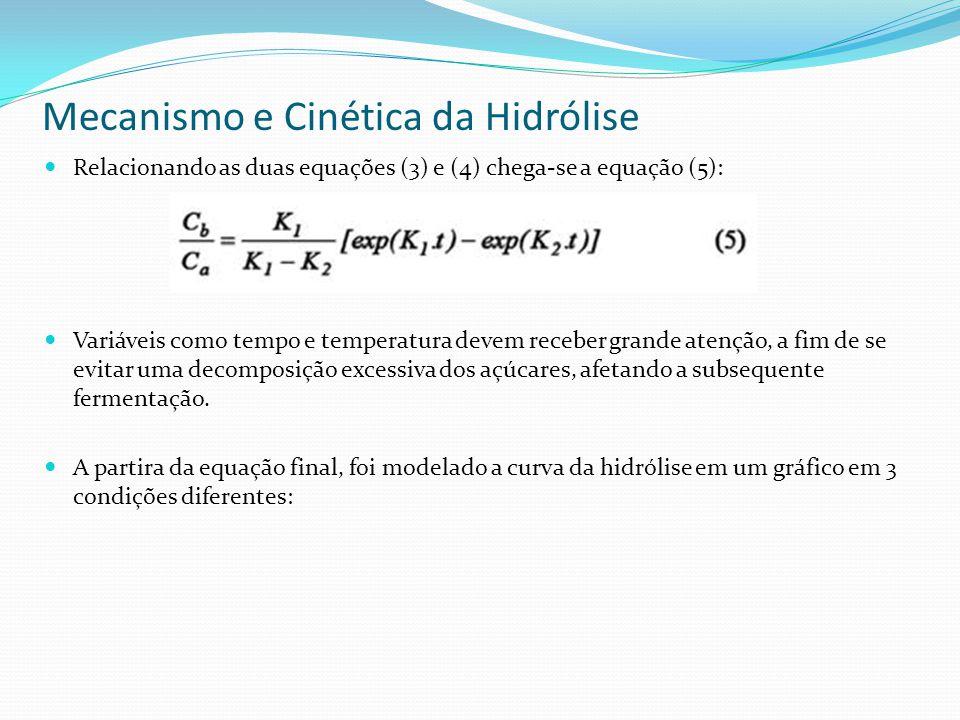 Mecanismo e Cinética da Hidrólise