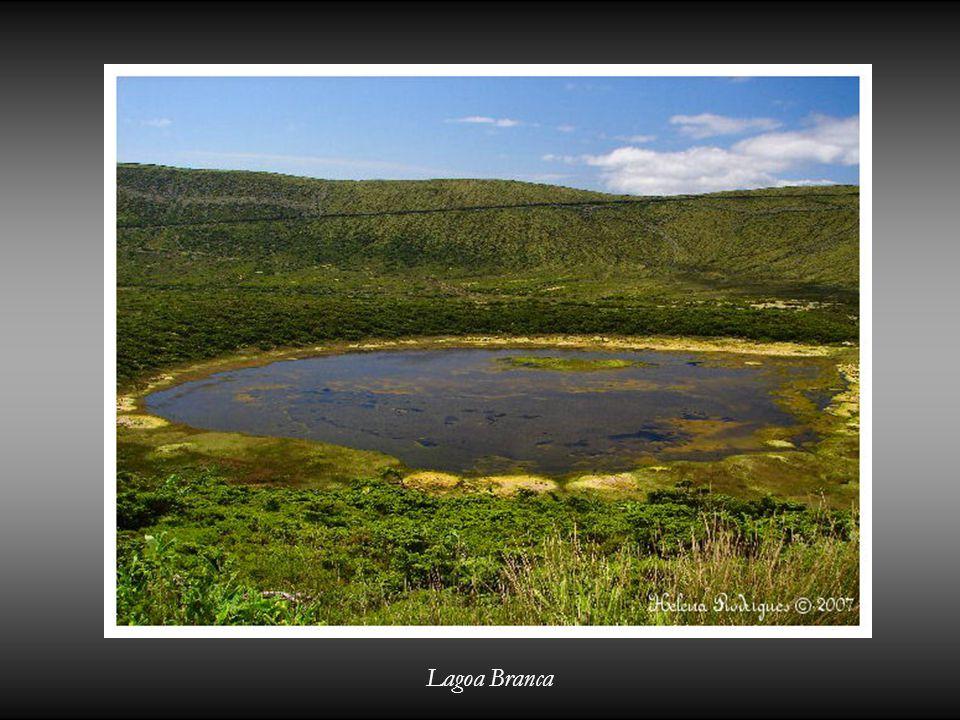 Lagoa Branca
