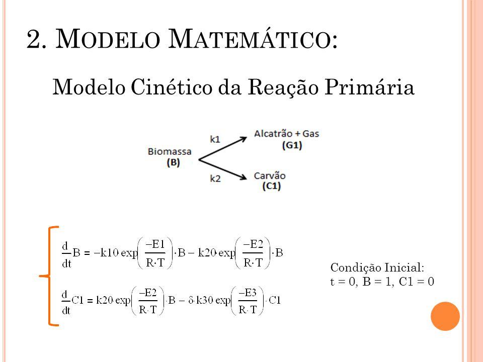 Modelo Cinético da Reação Primária