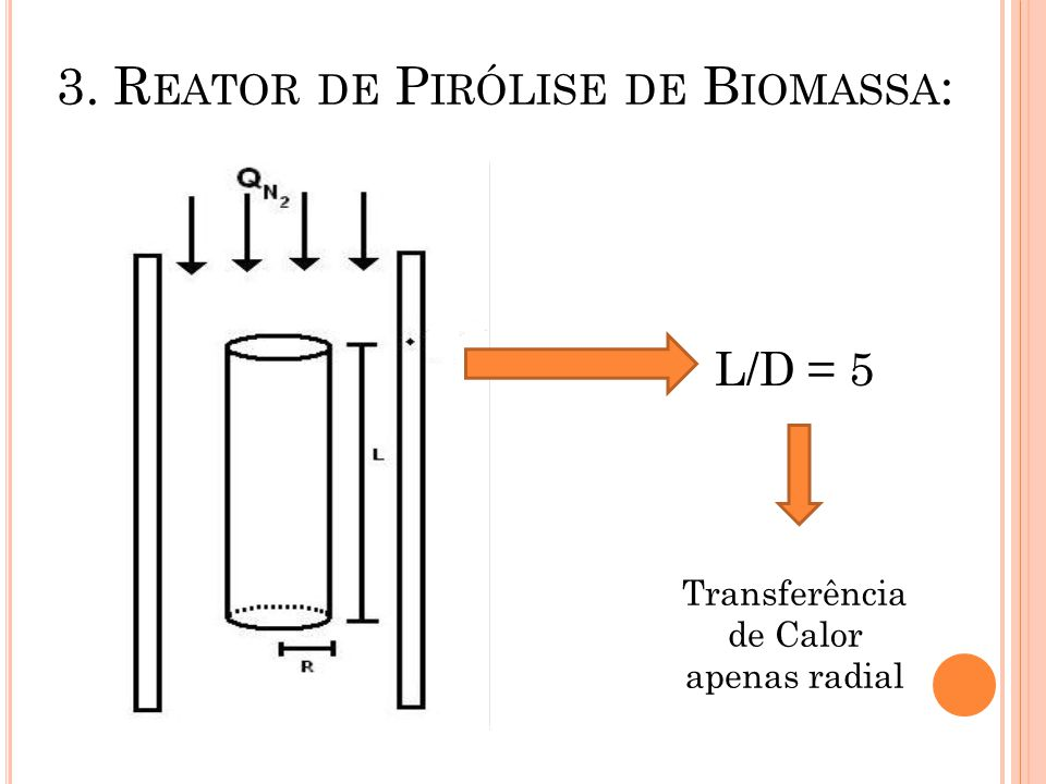 3. Reator de Pirólise de Biomassa: