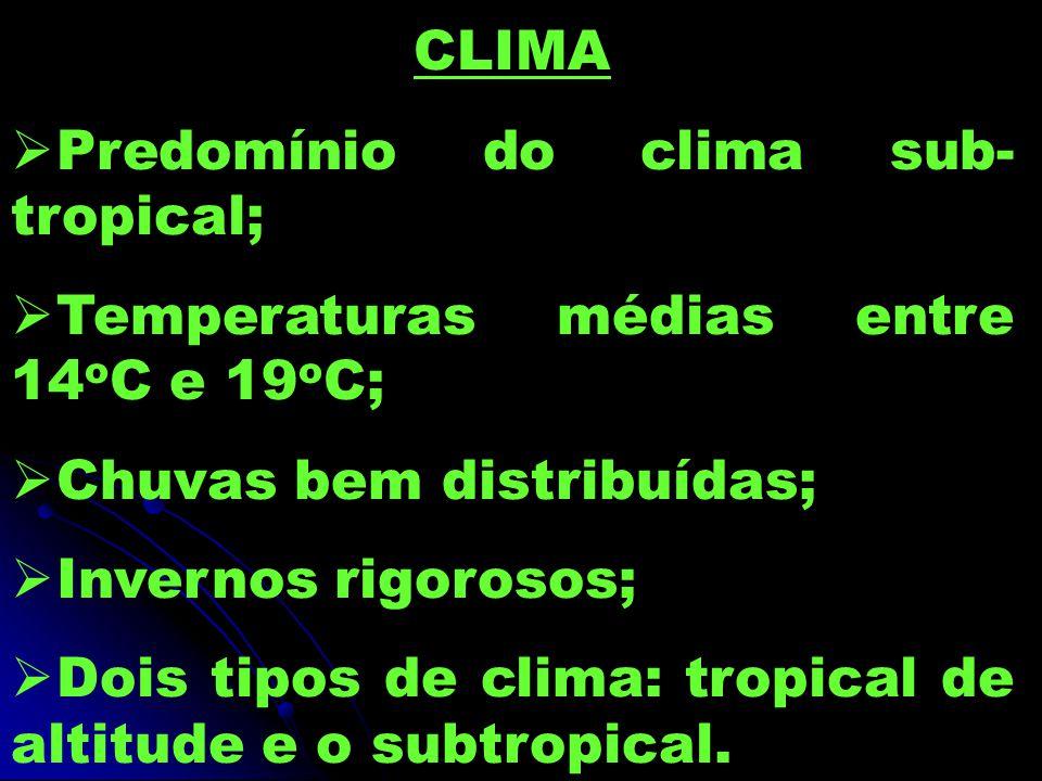 CLIMA Predomínio do clima sub-tropical; Temperaturas médias entre 14oC e 19oC; Chuvas bem distribuídas;