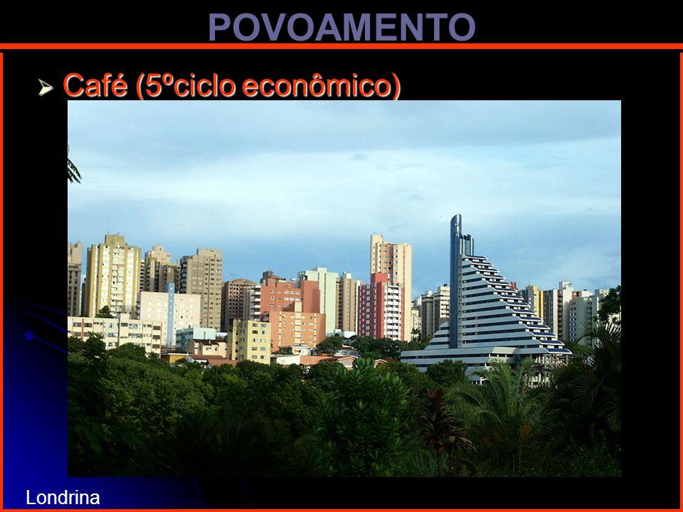 POVOAMENTO Café (5ºciclo econômico) Londrina