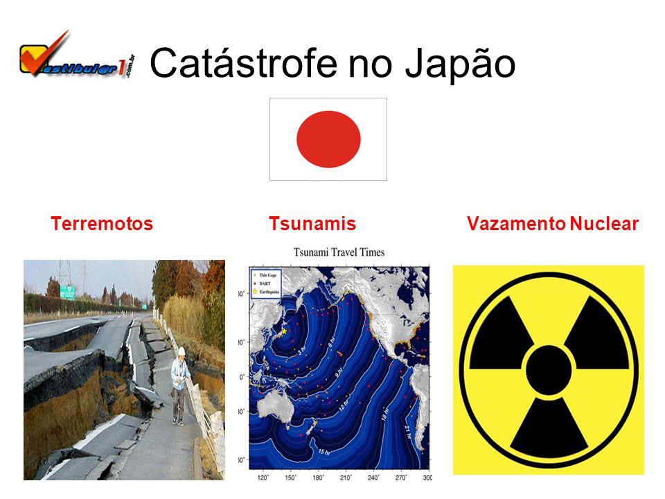 Terremotos Tsunamis Vazamento Nuclear