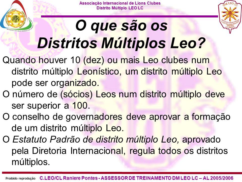 O que são os Distritos Múltiplos Leo