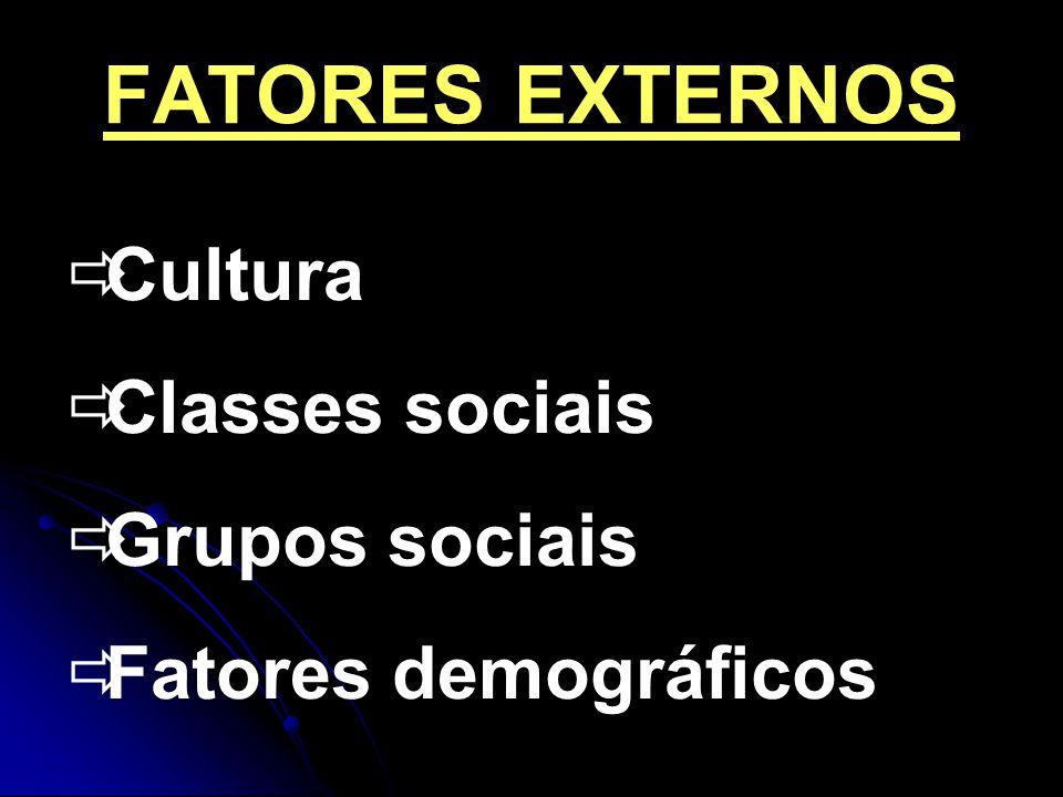 FATORES EXTERNOS Cultura Classes sociais Grupos sociais