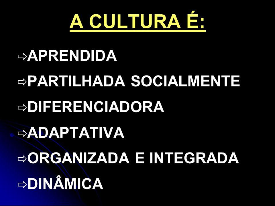 A CULTURA É: APRENDIDA PARTILHADA SOCIALMENTE DIFERENCIADORA