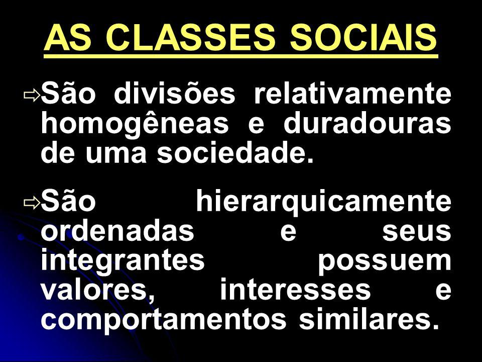 AS CLASSES SOCIAIS São divisões relativamente homogêneas e duradouras de uma sociedade.