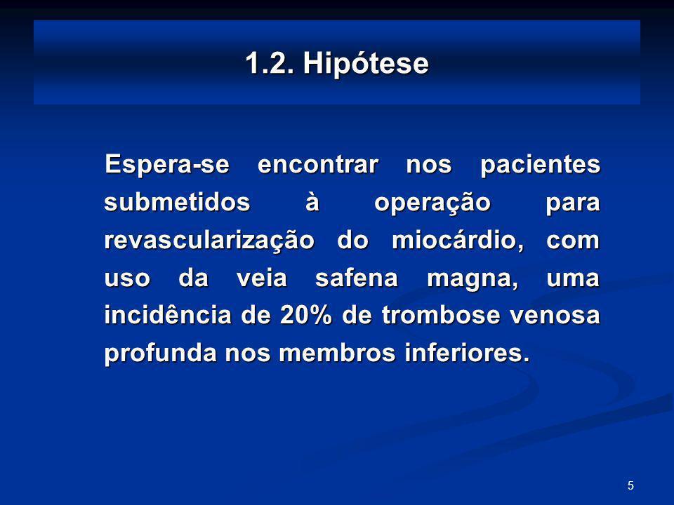 1.2. Hipótese