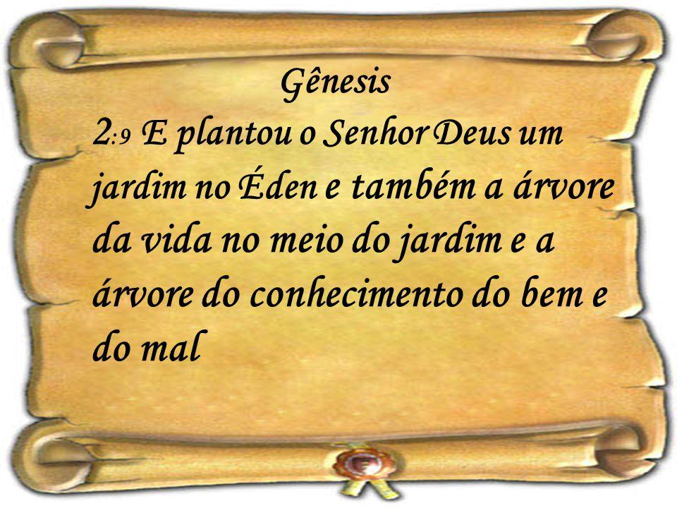 Gênesis 2:9 E plantou o Senhor Deus um jardim no Éden e também a árvore da vida no meio do jardim e a árvore do conhecimento do bem e do mal.