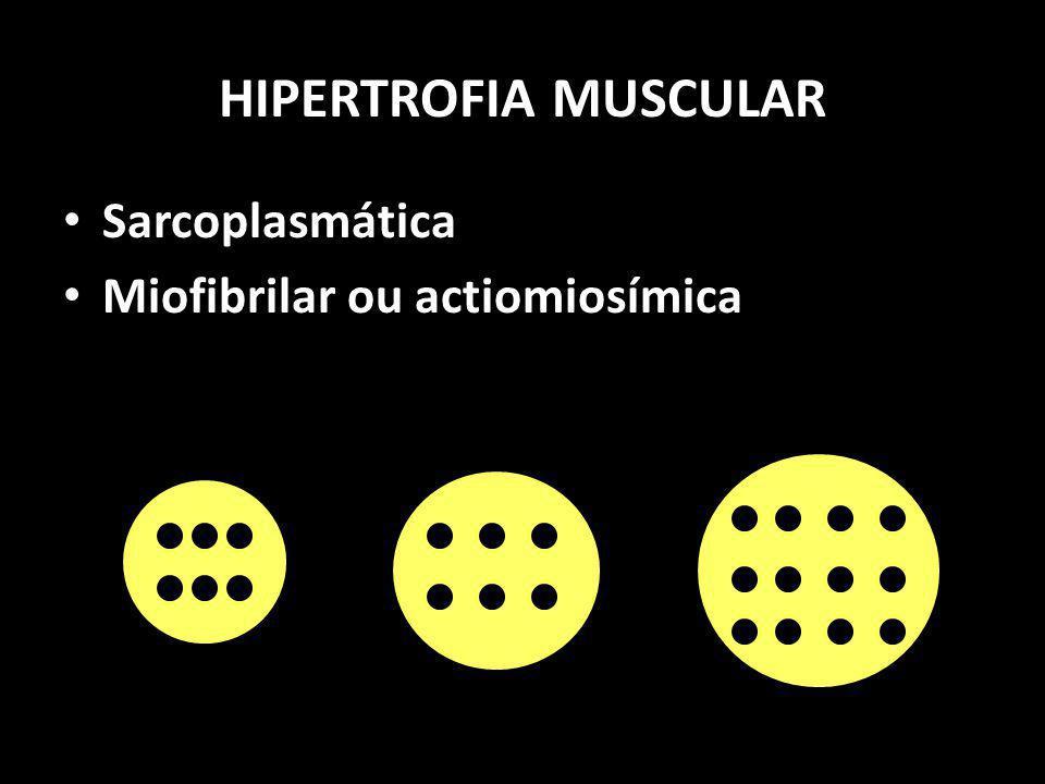 HIPERTROFIA MUSCULAR Sarcoplasmática Miofibrilar ou actiomiosímica