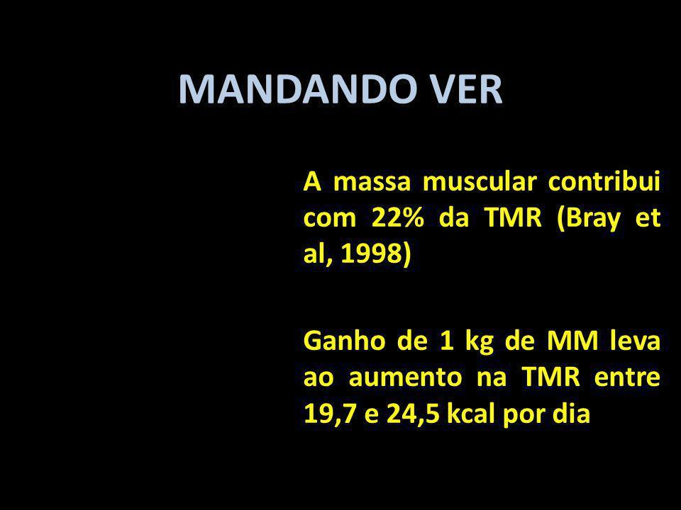 MANDANDO VER A massa muscular contribui com 22% da TMR (Bray et al, 1998) Ganho de 1 kg de MM leva ao aumento na TMR entre 19,7 e 24,5 kcal por dia.