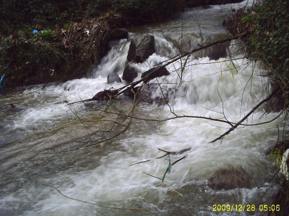 O nosso rio A nossa Escola O local da recolha O rio das Bruxas