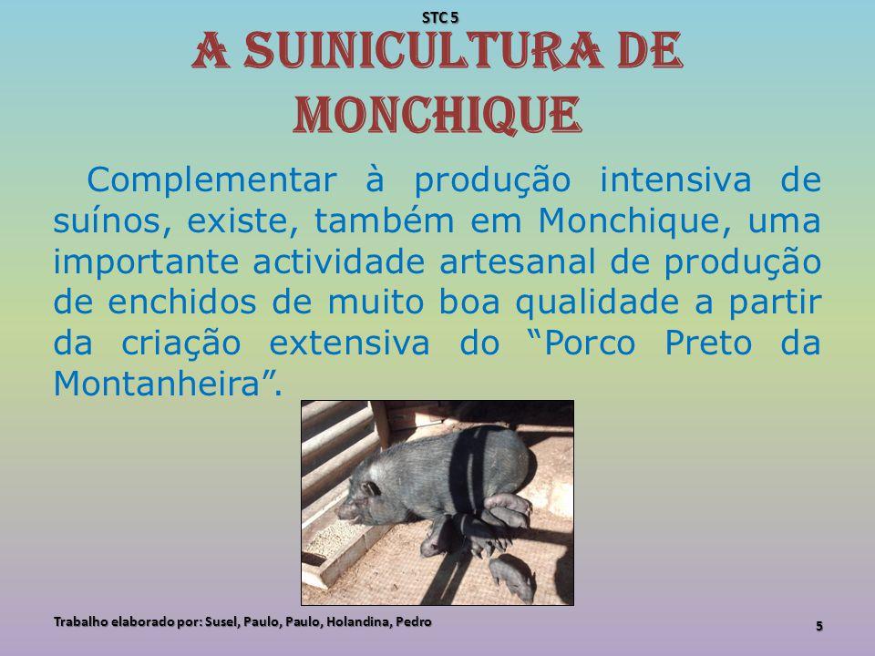 A suinicultura de Monchique