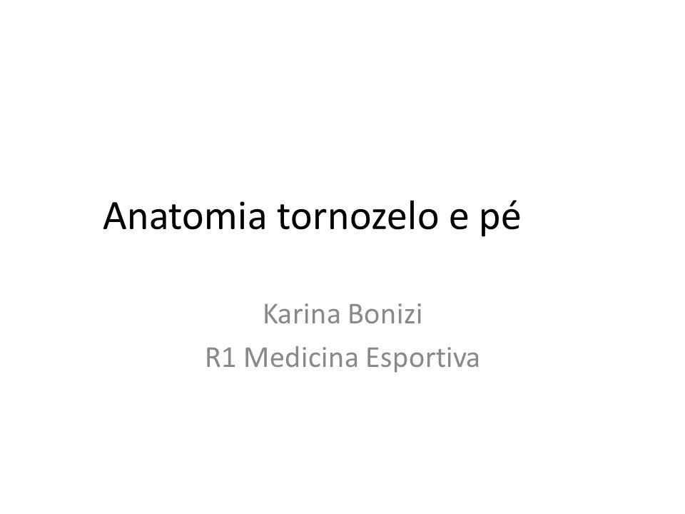 Anatomia tornozelo e pé