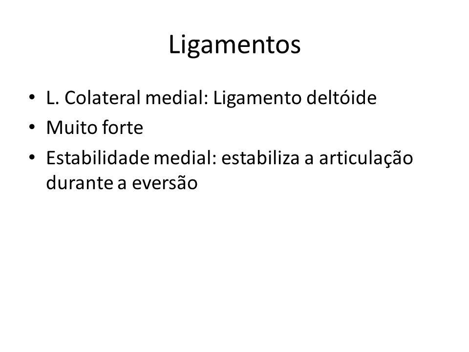 Ligamentos L. Colateral medial: Ligamento deltóide Muito forte