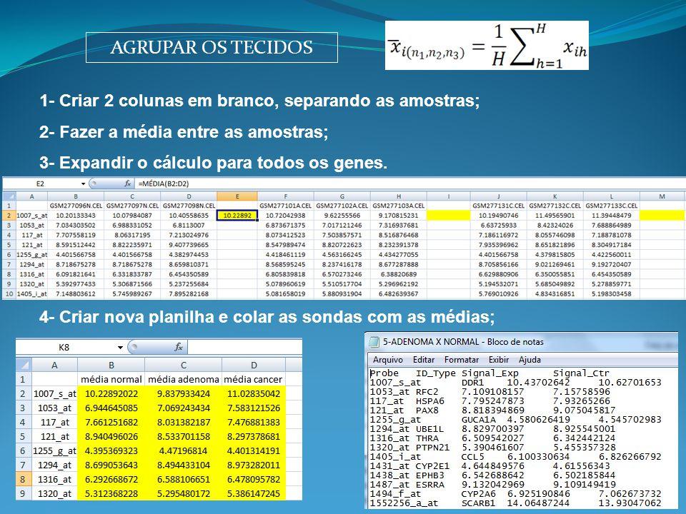 AGRUPAR OS TECIDOS 1- Criar 2 colunas em branco, separando as amostras; 2- Fazer a média entre as amostras;