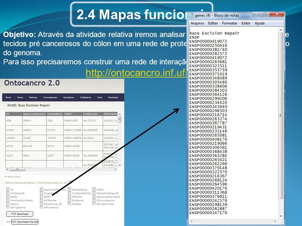 2.4 Mapas funcionais http://ontocancro.inf.ufsm.br/