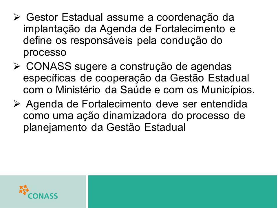 Gestor Estadual assume a coordenação da implantação da Agenda de Fortalecimento e define os responsáveis pela condução do processo