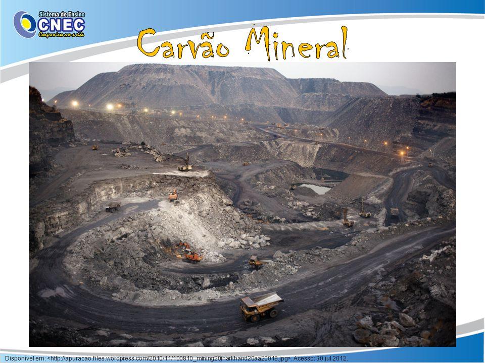 Carvão Mineral Restos de vegetais fossilizados