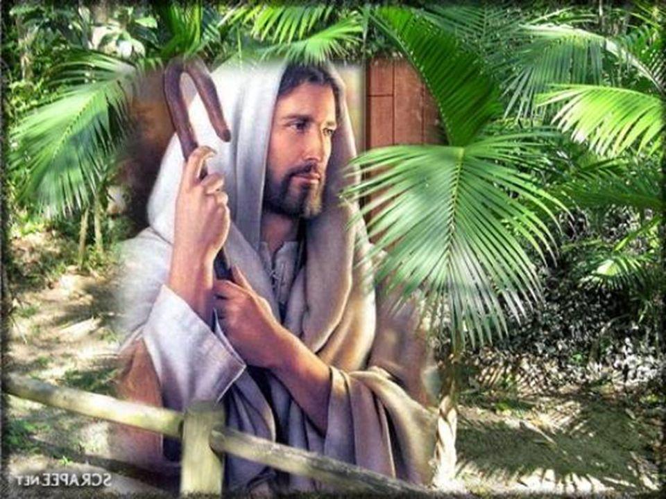 Sede santos porque Eu, o vosso Deus, sou santo .