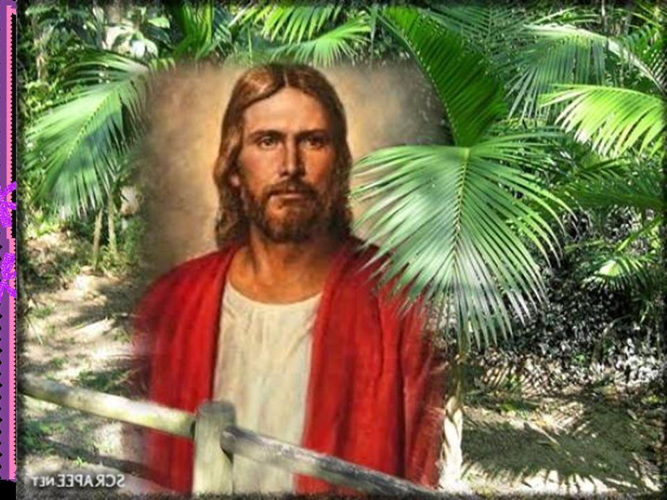 No entanto, a santidade não é uma anormalidade, mas uma exigência da comunhão com Deus. É o estado normal de quem se identifica com Cristo, assume a sua filiação divina e pretende caminhar ao encontro da vida plena, do Homem Novo.